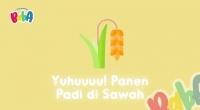 Yuhuuu! Panen Padi di Sawah | Baba Adventure | Main Bareng Baba